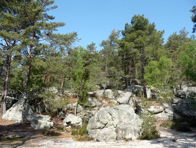 Fontainebleau-Bouldering-2